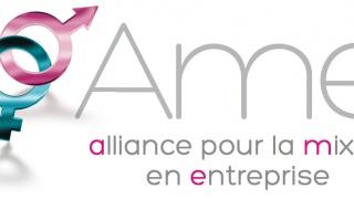 Afterwork réseau AME Alliance pour la Mixité en Entreprise 16 juin, 19h Lyon.